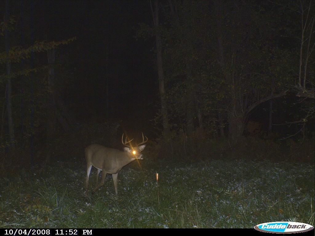 The 7 pt came out later that night.