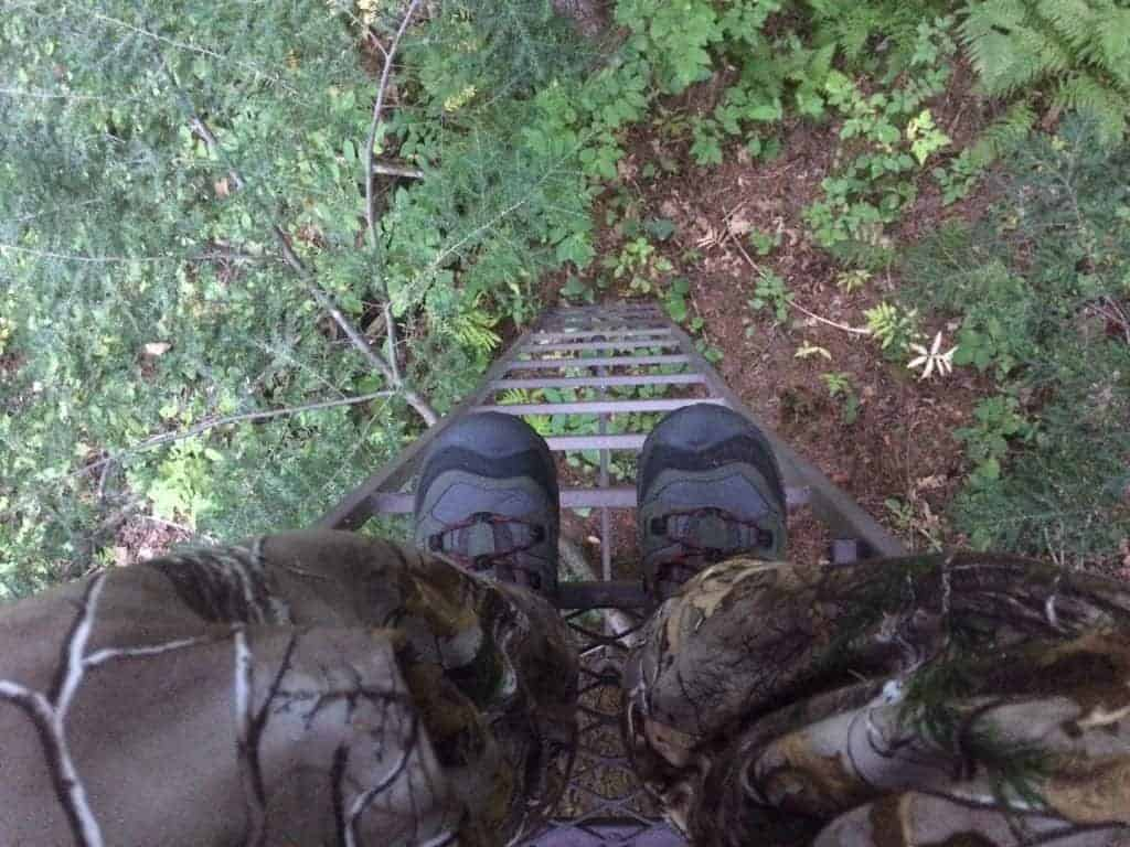 Ladder Stand, Hunting New Hampshire