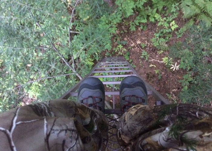 4PT16.1 – Back In The Deer Stand