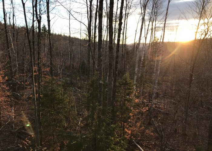 4PT16.13 – Vermont Opening Day Of Rifle Season