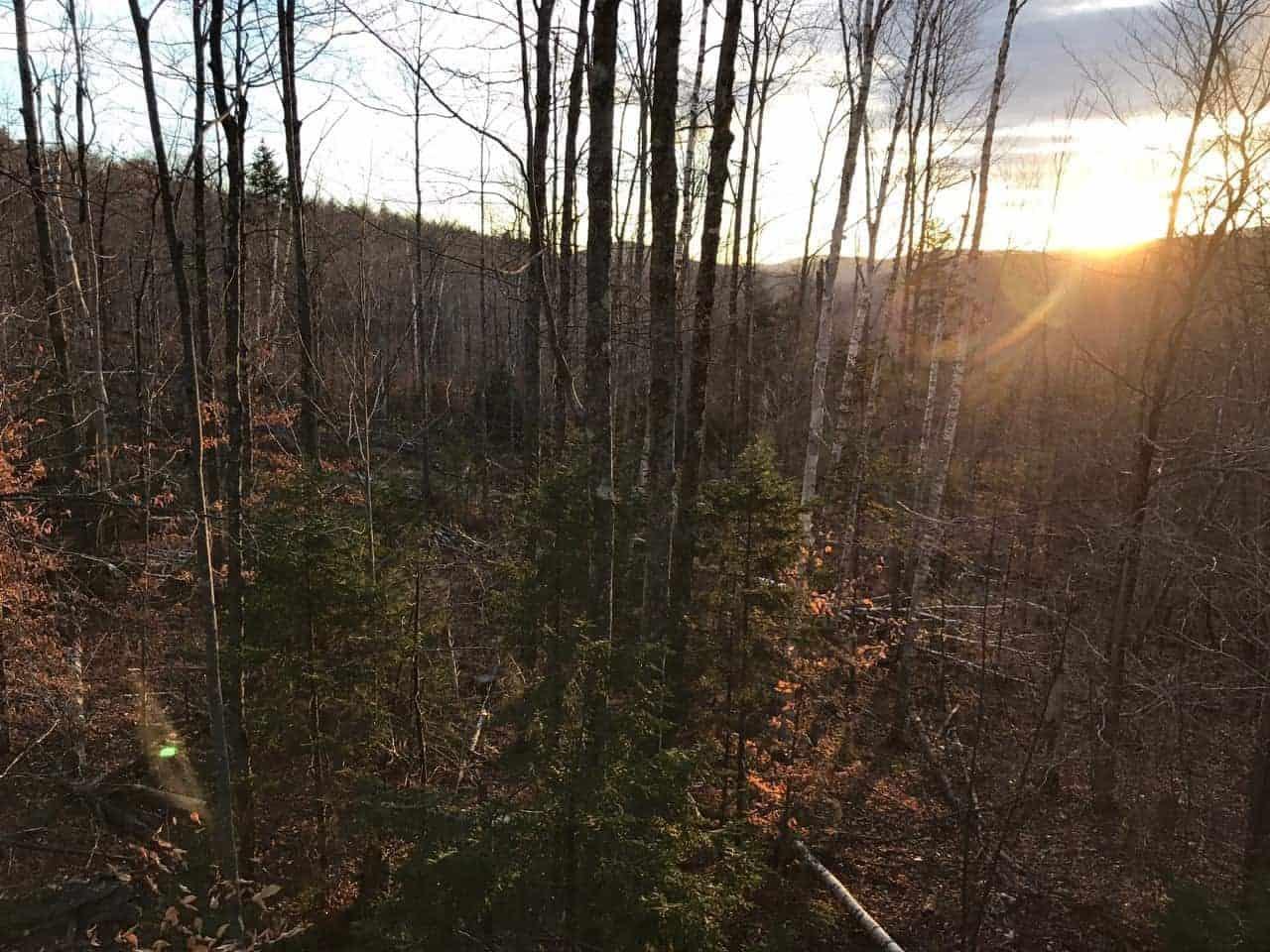sunset in Vermont deer Season