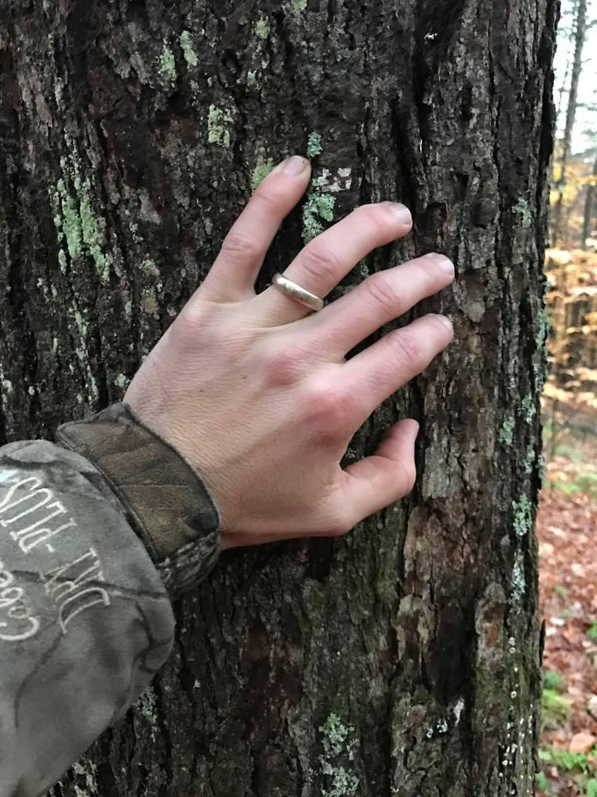 A Tree Named John 1