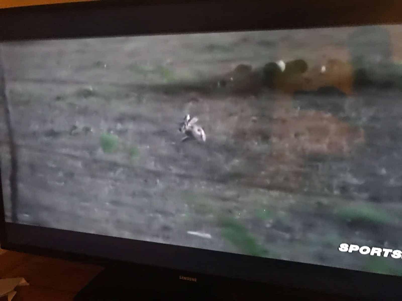 To Kill a Jackrabbit 4