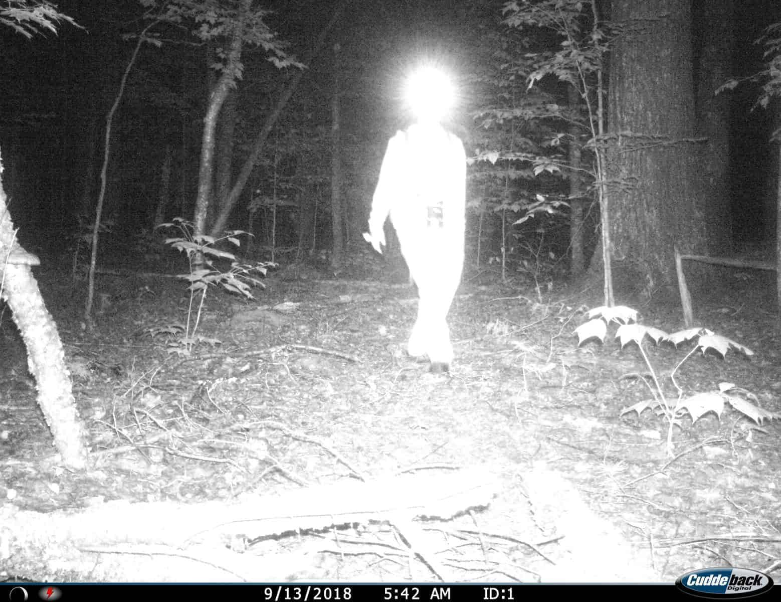 Scouting for Deer, Deer Season, Trail Cameras, Vermont, New Hampshire