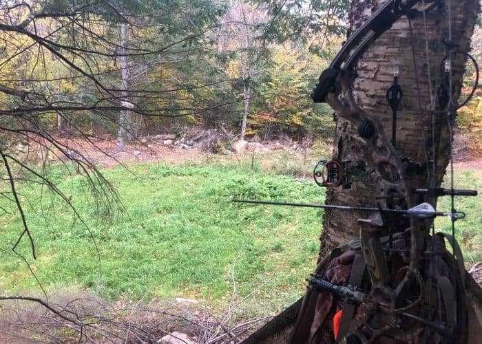 2018 Hunting Season Update #4 – The Dreaded October Lull