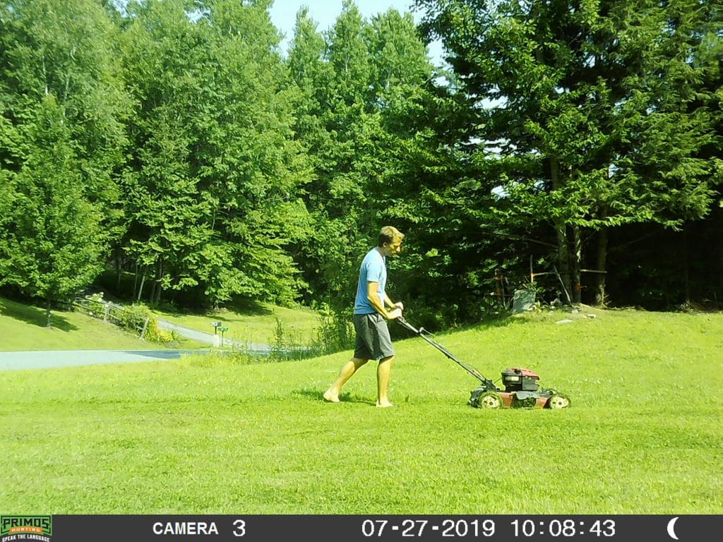 Trail Camera, Vermont, Primos