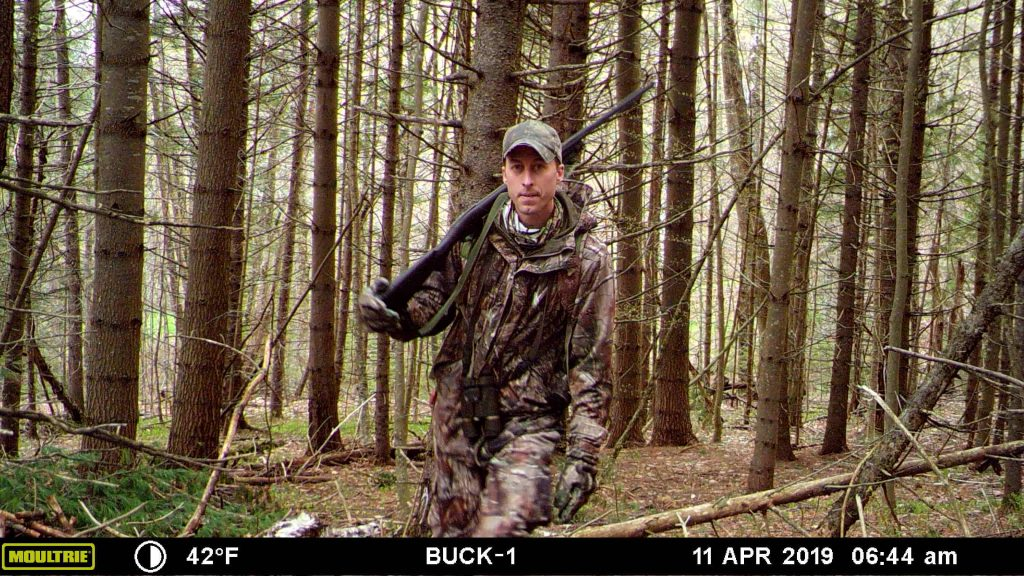 Trail Camera, Hunting, Vermont, New  Hampshire, Archery, Rifle, Deer, Turkey Hunting